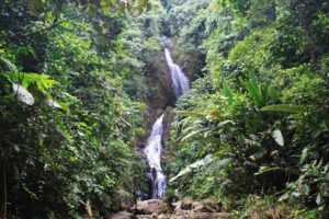 Senderismo en San Francisco: La Eresma, paisajes, cascadas y bosques húmedos